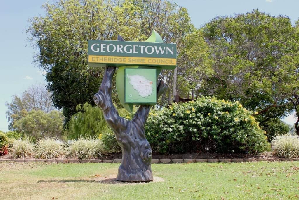 A tree inpsired entry monument for the town of Georgetown